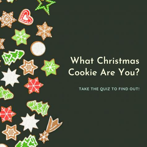 Quiz: What Christmas Cookie Are You?